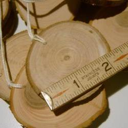 Wooden Gift Tags Ornament Blanks Hang Tags Tree Branch Slices 20 Piece 2 inch